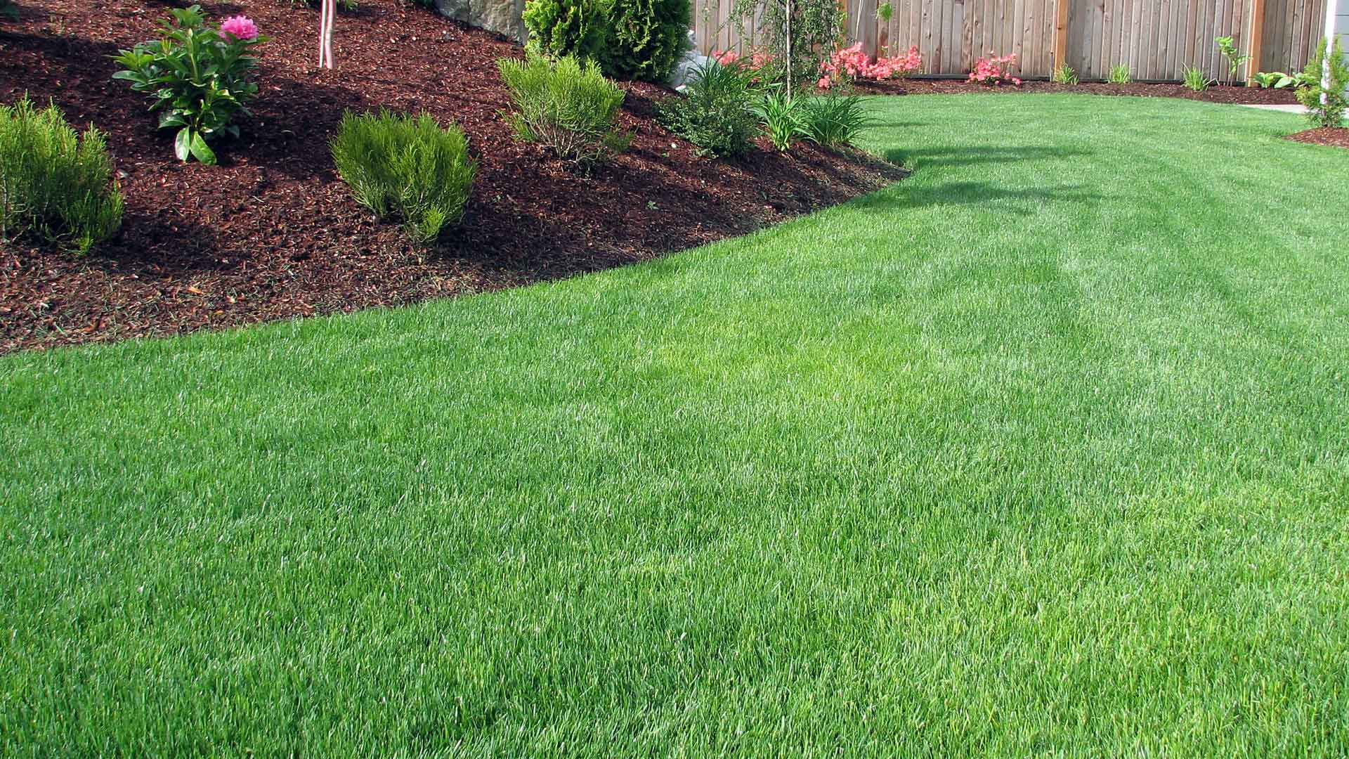Lawn and landscape maintenance in Fishers, IN.