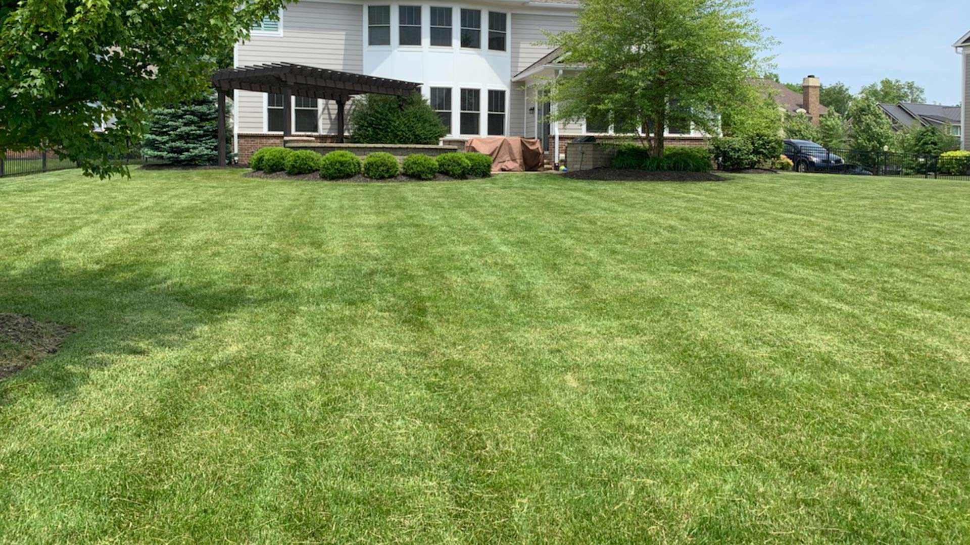 Noblesville customer with a lawn freshly mowed by Spider Lawn & Landscape.