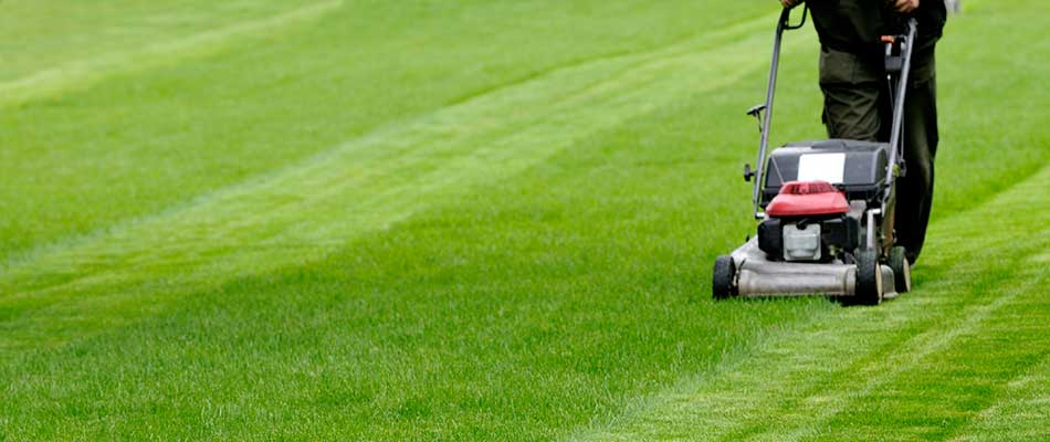 Lawn mowing services in Carmel, IN.