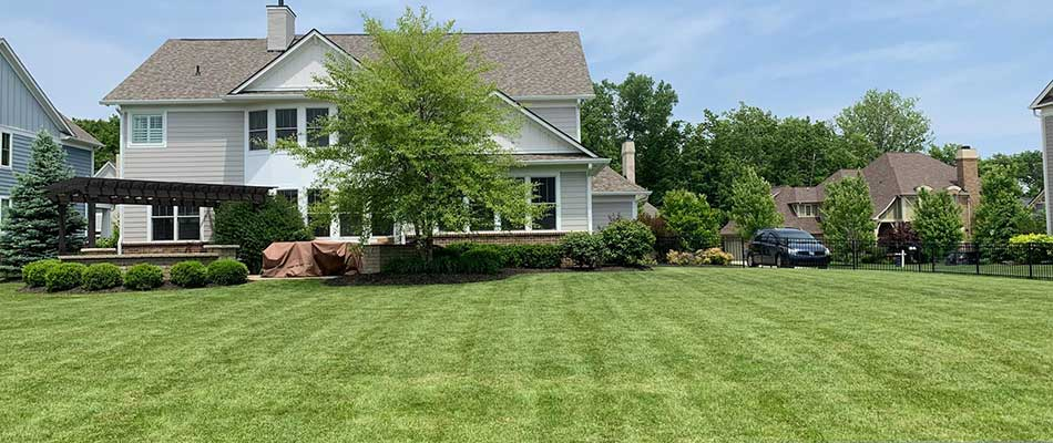 Mowing Height Guide for Indiana Lawns