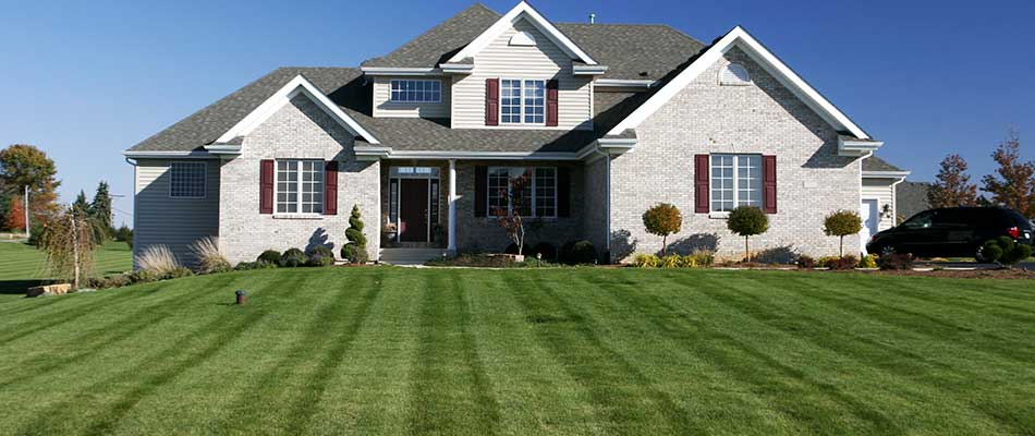 The Importance of Establishing a Lawn Mowing Routine