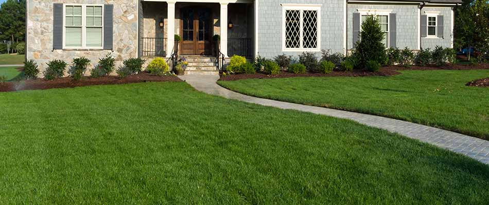 A healthy and thick lawn in Carmel, that is the result of scheduled fertilization & weed control services.