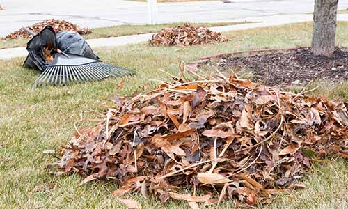 Fall cleanup with leaf removal at a residential property in Noblesville.